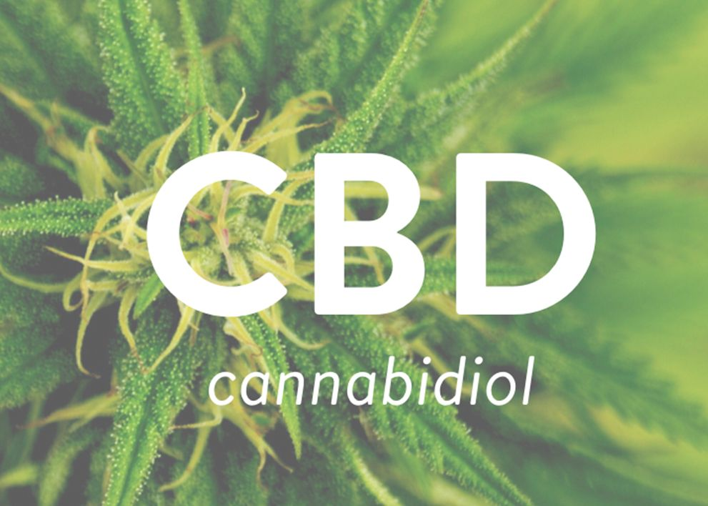 cbd oil what you need to know -